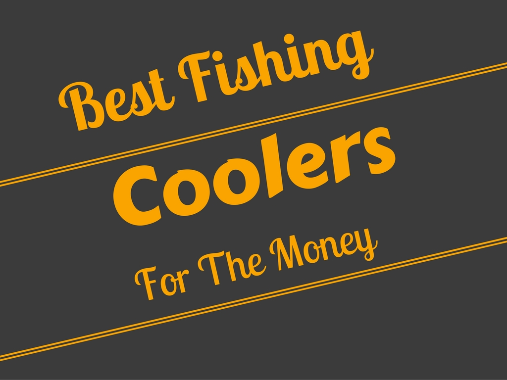 Best Fishing Coolers For The Money This Year