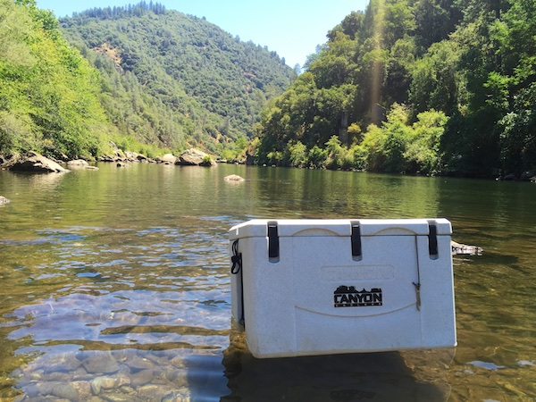 Review of the Best Ice Chest Coolers for Sale
