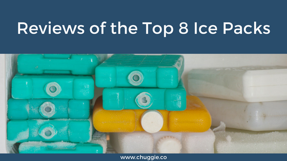 The Best Ice Packs for Coolers Reviews
